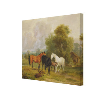 Horses Grazing: Mares and Foals in a Field (oil on Gallery Wrapped Canvas