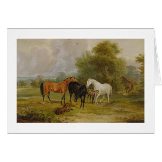 Horses Grazing: Mares and Foals in a Field (oil on Greeting Card