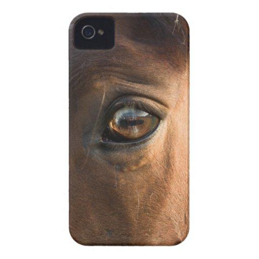 Horses Head BlackBerry Bold Case