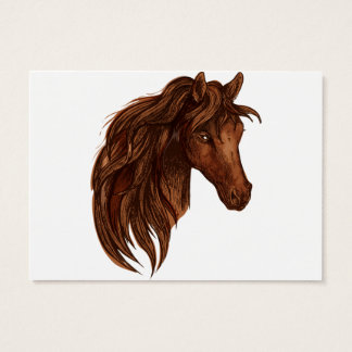 Horses Horse Sport Business Card