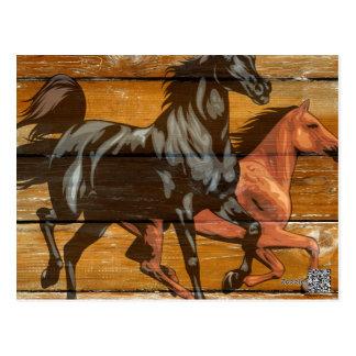 Horses Horseshoes Barn Wood Cowboy Postcard