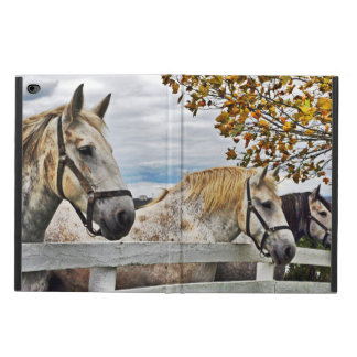 Horses In Autumn