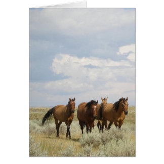 Horses in Big Sky Country Card
