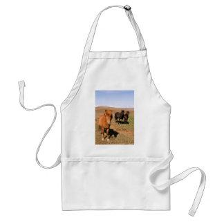 Horses in Krisuvik Standard Apron