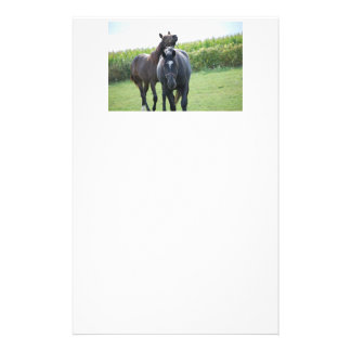 Horses in Love Personalised Stationery