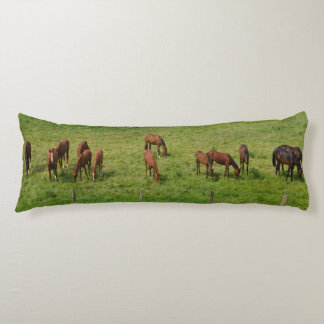 Horses in Pasture Body Cushion