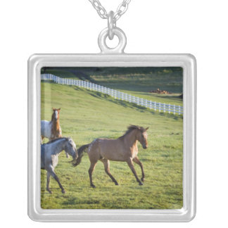 Horses in pasture near Polson, Montana 2 Square Pendant Necklace