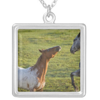 Horses in pasture near Polson, Montana Square Pendant Necklace