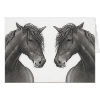 HORSES IN PENCIL: KINDRED SPIRIT: CARD