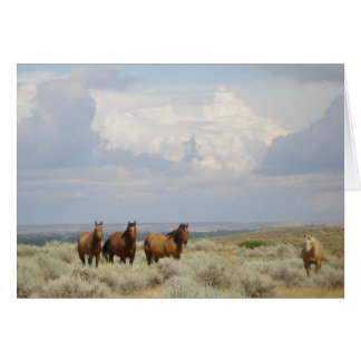 Horses in the American West Card