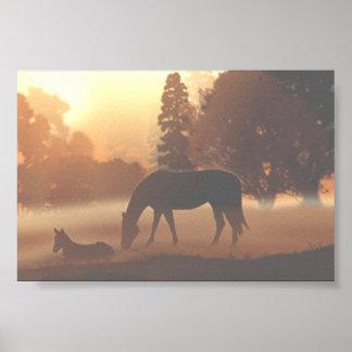 Horses in the Morning Fog Poster