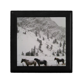 Horses in the snow in the mountains gift box