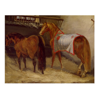 Horses in the Stables Postcard
