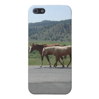Horses iPhone 5 Cover