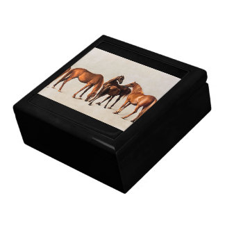 Horses Mares Foals Farm Animals Gift Box