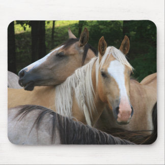 Horses mouse pad