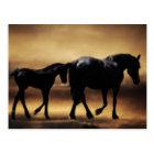 Horses mum and I Postcard