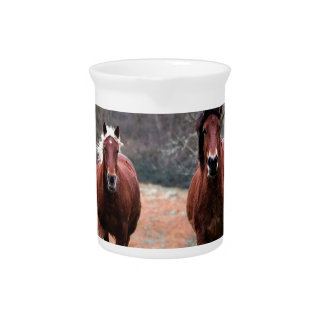 Horses Nature Pitcher