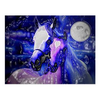 Horses & Night Postcard
