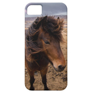 Horses of Iceland Barely There iPhone 5 Case
