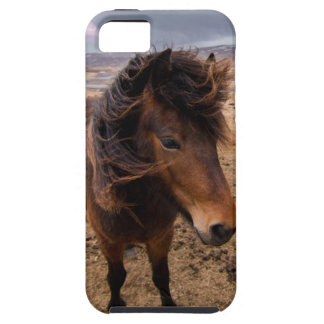 Horses of Iceland iPhone 5 Case