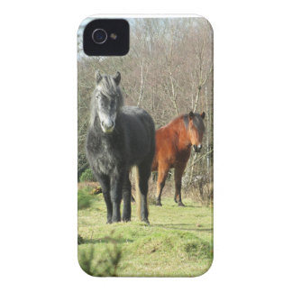 Horses of The Forest 1 iPhone 4 Covers