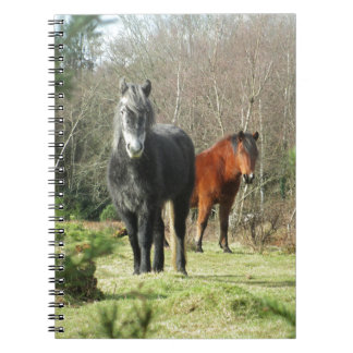 Horses of The Forest 1 Notebook