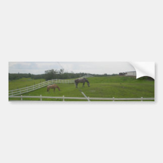 Horses on a cloudy day bumper sticker