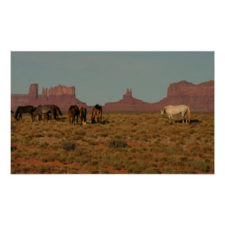 Horses on Western Range Poster