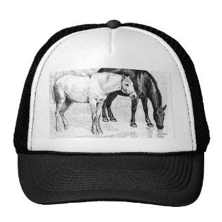 horses,pencil drawn hat