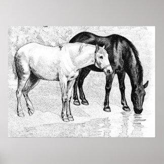 horses pencil drawn poster