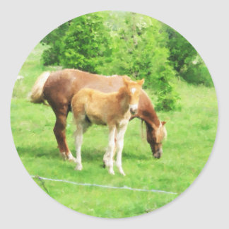 Horses relaxing in the field classic round sticker