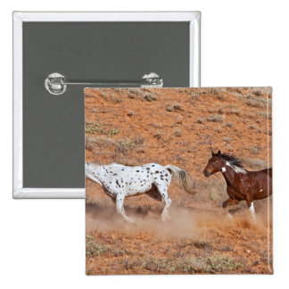 Horses roaming the Big Horn MT of Shell Wyoming 2 Buttons