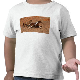 Horses roaming the Big Horn MT of Shell Wyoming. Shirt