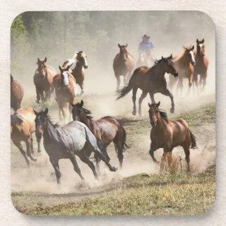 Horses running during roundup, Montana Drink Coaster