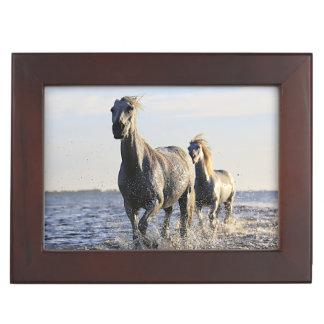 Horses Running In Water Mural Wooden Keepsake Box