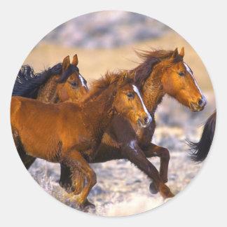 Horses running round stickers