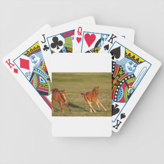 Horses Running Wild Bicycle Playing Cards