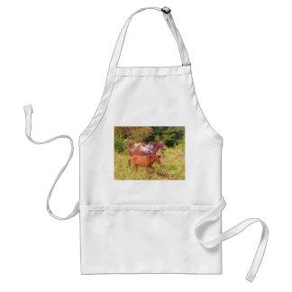 horses south america apron