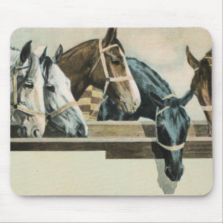 Horses Together mouse pad