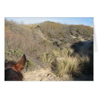 Horse's View Greeting Card
