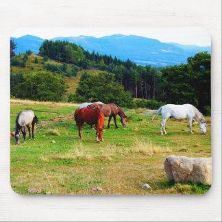 Horses Wildlife Mousepads