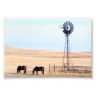 Horses & Windmill Print