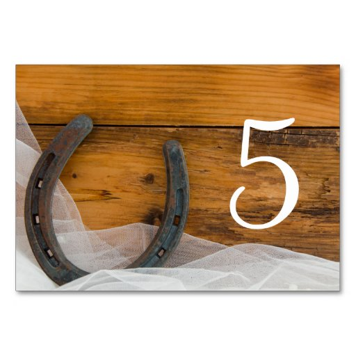 Horseshoe and Veil Country Wedding Table Numbers Table Card