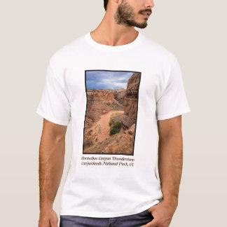 Horseshoe Canyon Thunderstorm - Utah T-Shirt