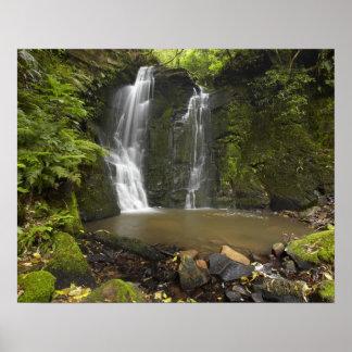 Horseshoe Falls, Matai Falls Poster