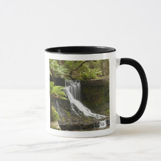 Horseshoe Falls, Mount Field National Park, Mug
