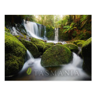 Horseshoe Falls, Mt Field National Park, Tasmania Postcard