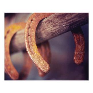 Horseshoes on Barn Wood Cowboy Country Western 11.5 Cm X 14 Cm Flyer