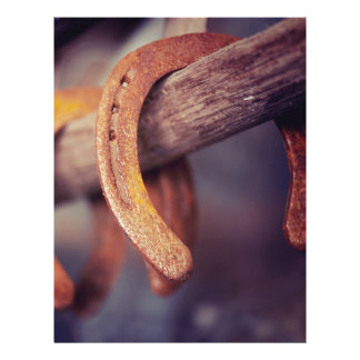 Horseshoes on Barn Wood Cowboy Country Western 21.5 Cm X 28 Cm Flyer
